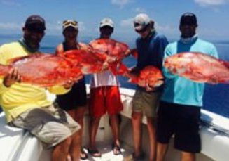 st george island fl hotels - Snapper Fishing while on SGI